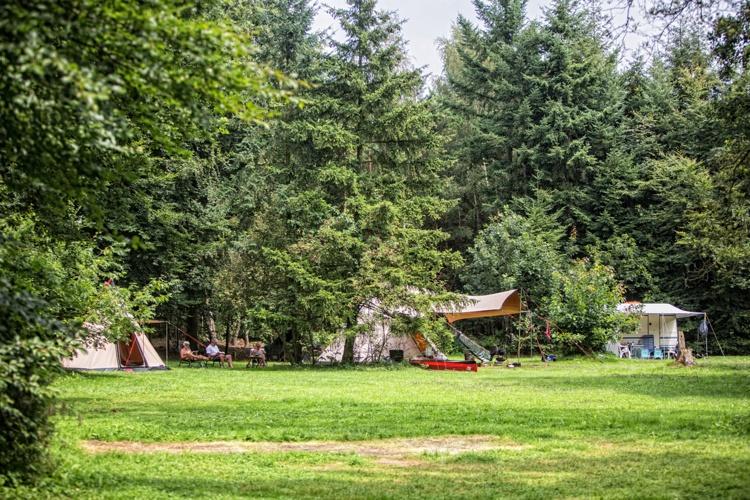 Klik op de foto en bekijk de galerij van Natuurkampeerterrein Distelheide